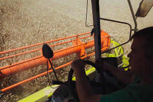 Уборка зерновых в Краснодарском крае ©Фото Амины Ибрагимовой, Юга.ру