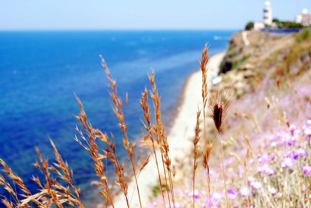 Анапа, Высокий берег ©Фото Анны Петровой, Юга.ру