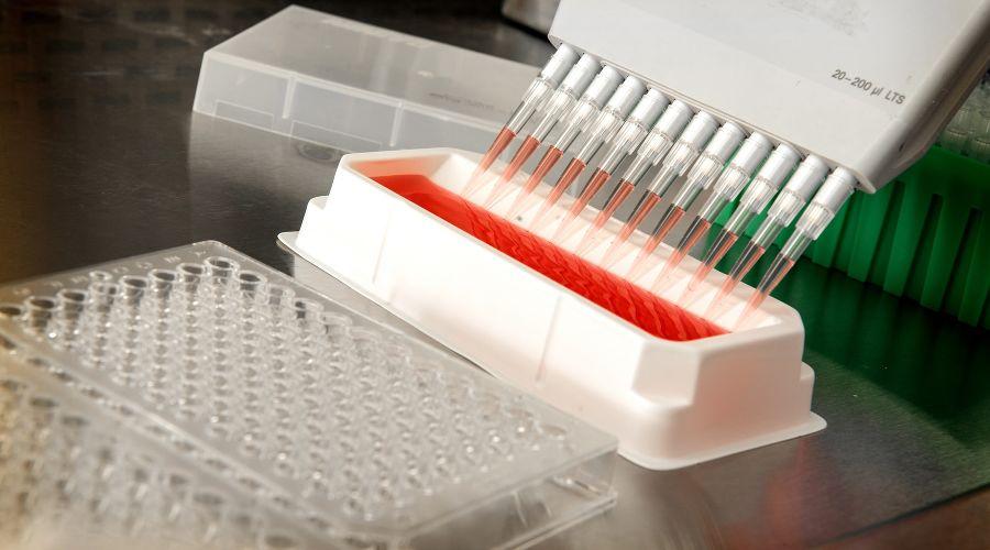 На Кубани выявили 87 носителей коронавируса за сутки, скончалась 3 больных
