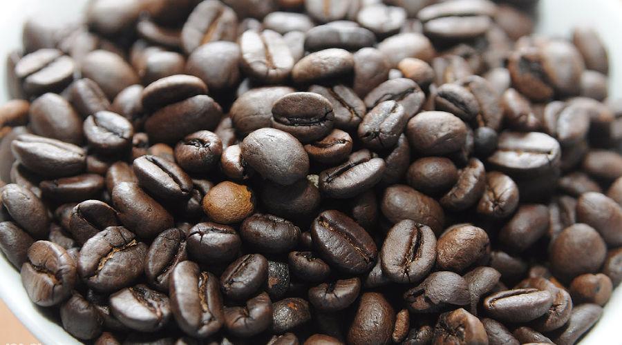 Открытие фабрики растворимого кофе Nescafe на Кубани ©Фото Елены Синеок, Юга.ру