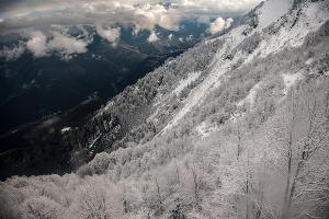 Открытие зимнего курортного сезона в Сочи ©Фото Нины Зотиной, Юга.ру