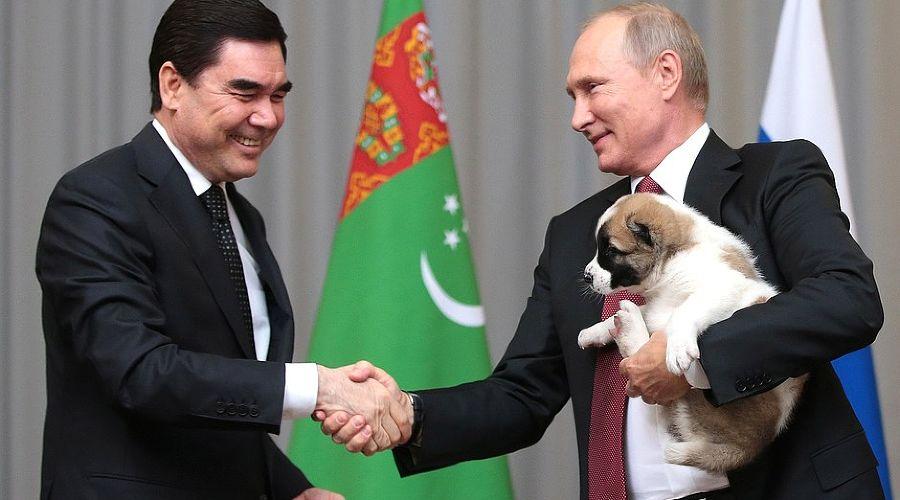 Президент Туркмении подарил Путину щенка алабая по кличке Верный ©Фото пресс-службы Кремля
