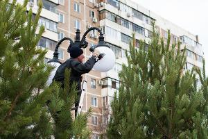Аллея в честь 80-летия образования Краснодарского края