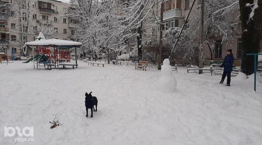©Фото Анны Петровой, Юга.ру