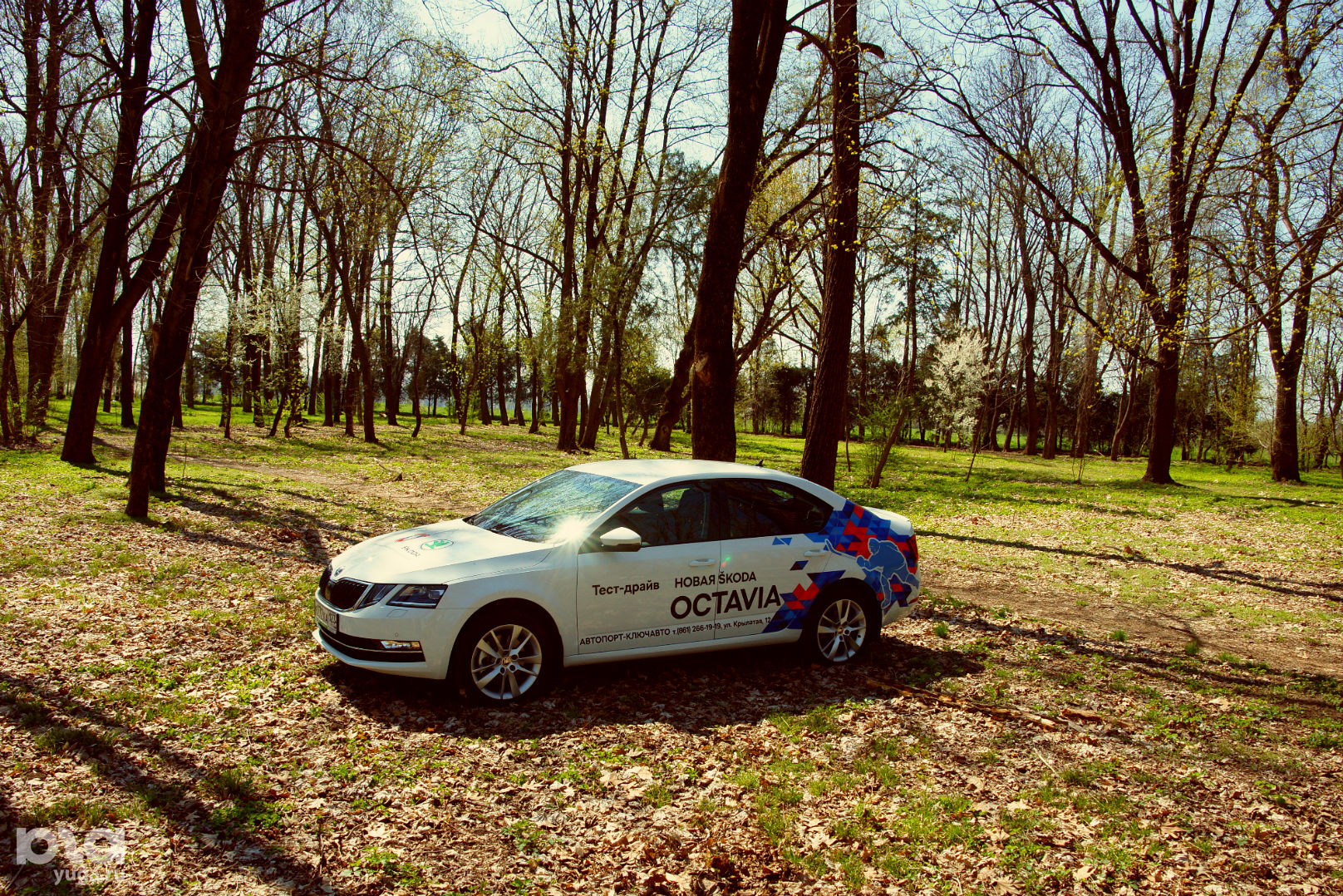 Новая Skoda Octavia © Фото Евгения Мельченко, Юга.ру ©Фото Юга.ру