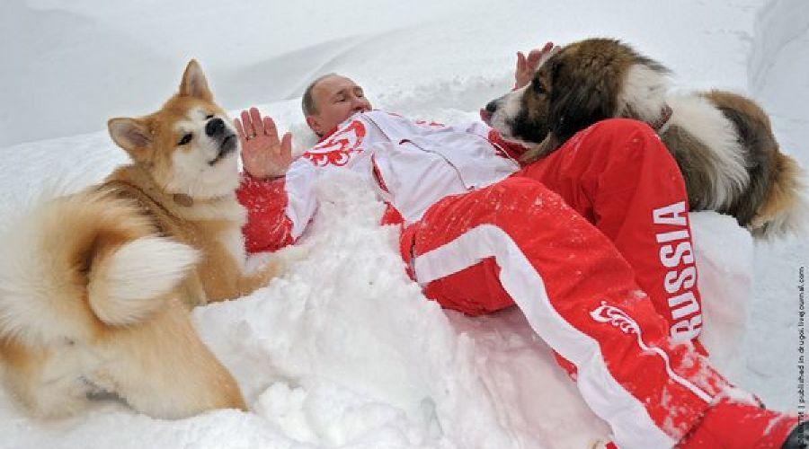 Владимир Путин ©Алексей Дружинин, РИА Новости