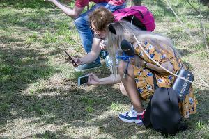 Желтопузик ©Фото пресс-службы Сочинского нацпарка