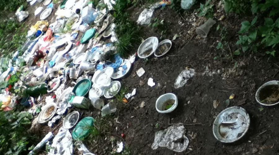 Уборка мусора в Краснодаре ©Фото Юга.ру
