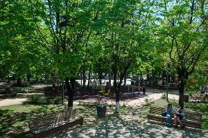 Сквер «Фестивальный» ©Фото Дмитрия Пославского, Юга.ру