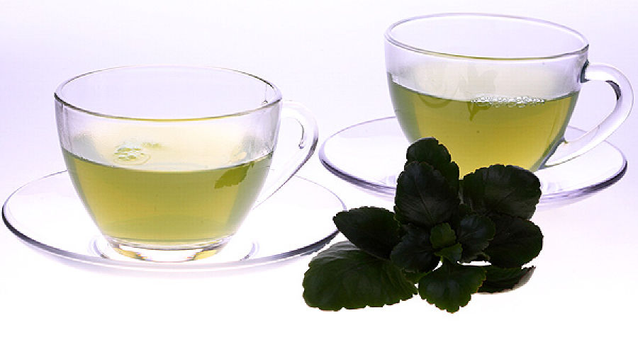 tea_green_b01.jpg ©Фото Юга.ру