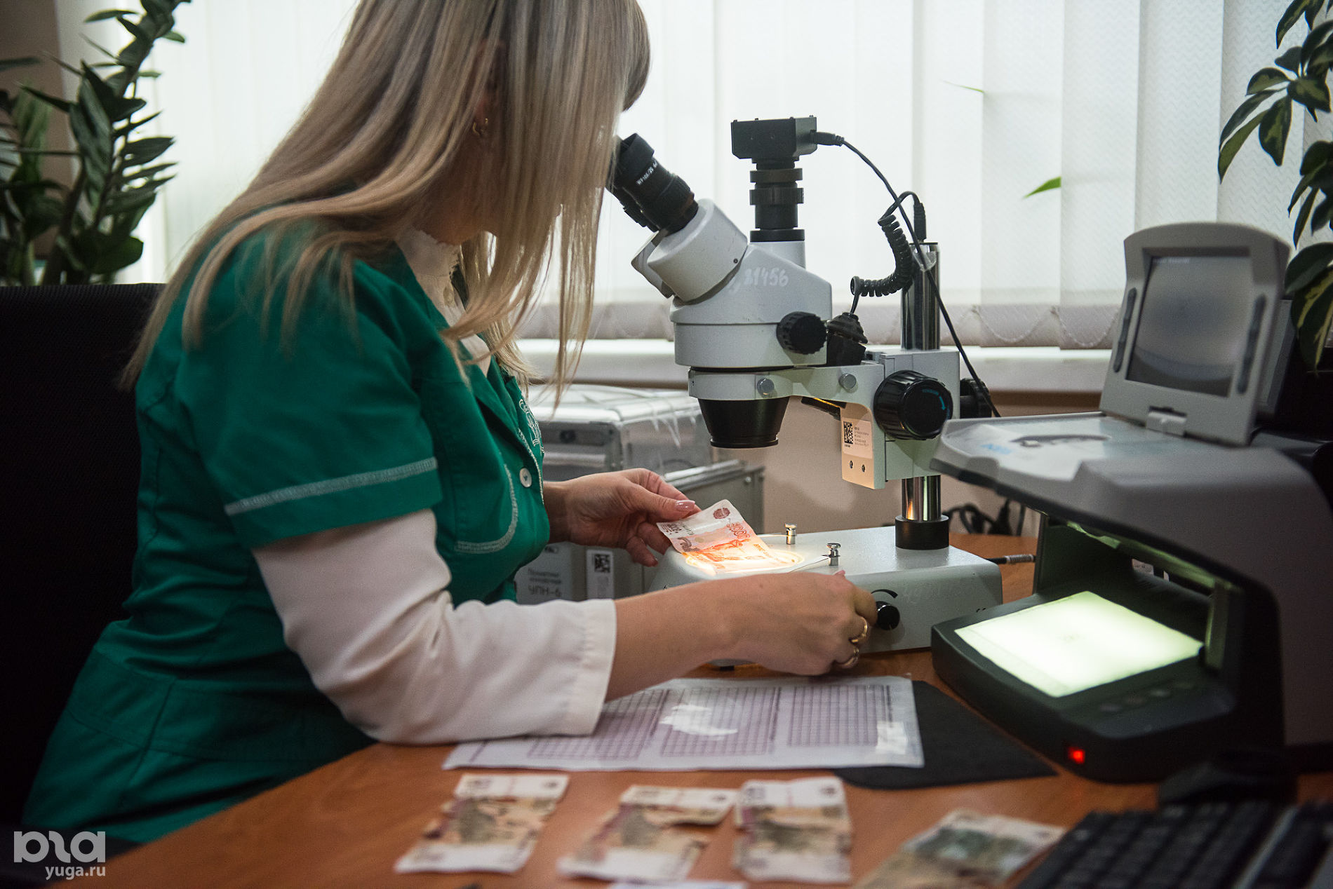 Эксперт проверяет подлинность купюры ©Фото Елены Синеок, Юга.ру