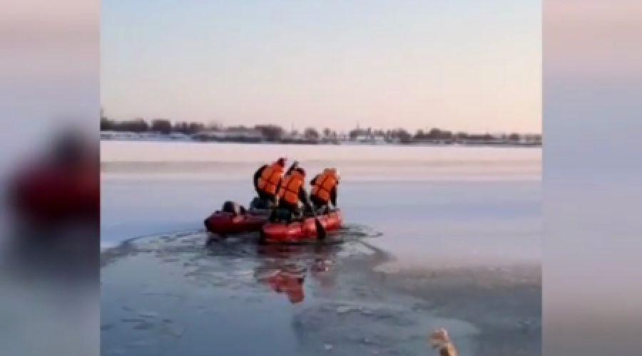 ©Скриншот видео из инстаграма ГКУ «Кубань-СПАС», instagram.com/kuban_spas/