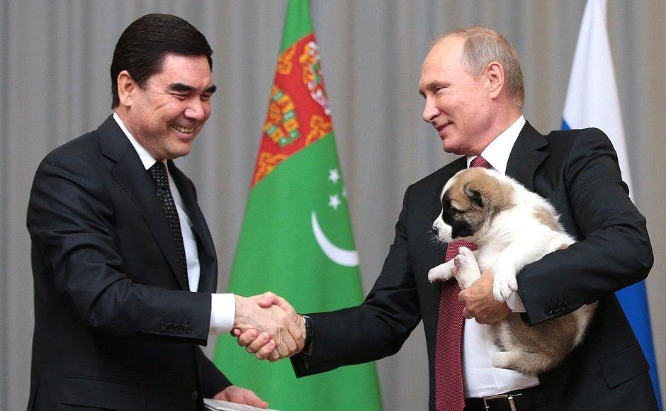 Путин получил вподарок щенка алабая покличке Верный