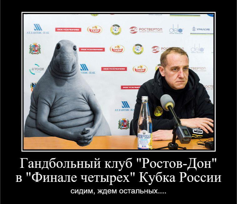 ©Фото из аккаунта в Twitter, twitter.com/rostovhandball
