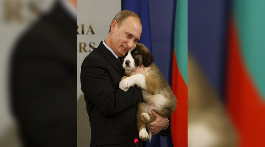 Владимир Путин со своим щенком, фото:funkyimg.com ©Фото Юга.ру