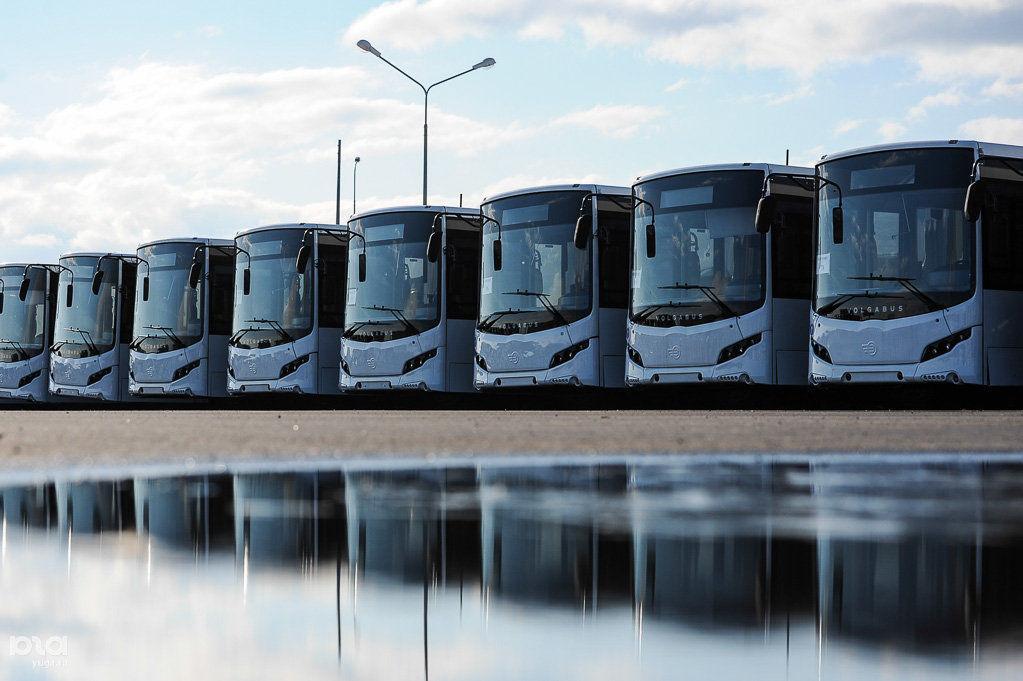 ВРостове отменили закупку 100 новых автобусов кЧМ