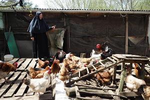 При монастыре есть небольшое хозяйственное подворье ©Фото Виталия Тимкива, Юга.ру