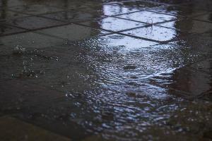 Дождь в Краснодаре ©Фото Елены Синеок, Юга.ру