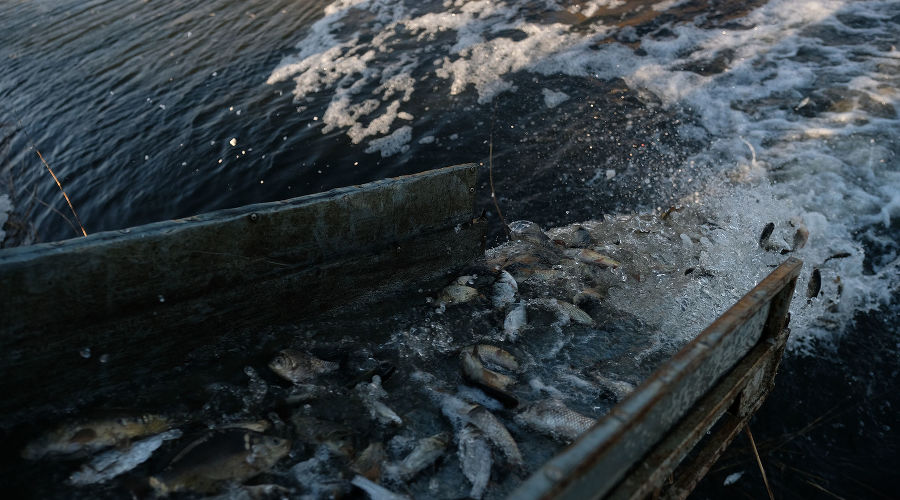 ©Фото пресс-службы «Газпром добыча Краснодар»