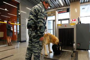 В Сочи проверили готовность полиции к летнему сезону ©Фото Влада Александрова, Юга.ру