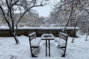 Снег в Краснодаре ©Фото Валерии Дульской, Юга.ру
