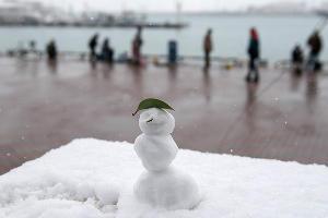 Снег в Сочи ©Нина Зотина, ЮГА.ру