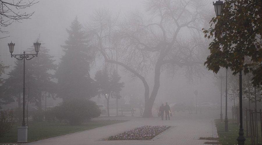 Туман в Краснодаре ©Фото Алены Живцовой, Юга.ру