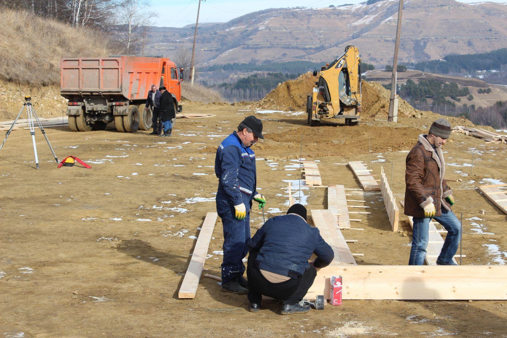 ВКисловодске построят приют для бездомных собак стоимостью 30 млн руб.
