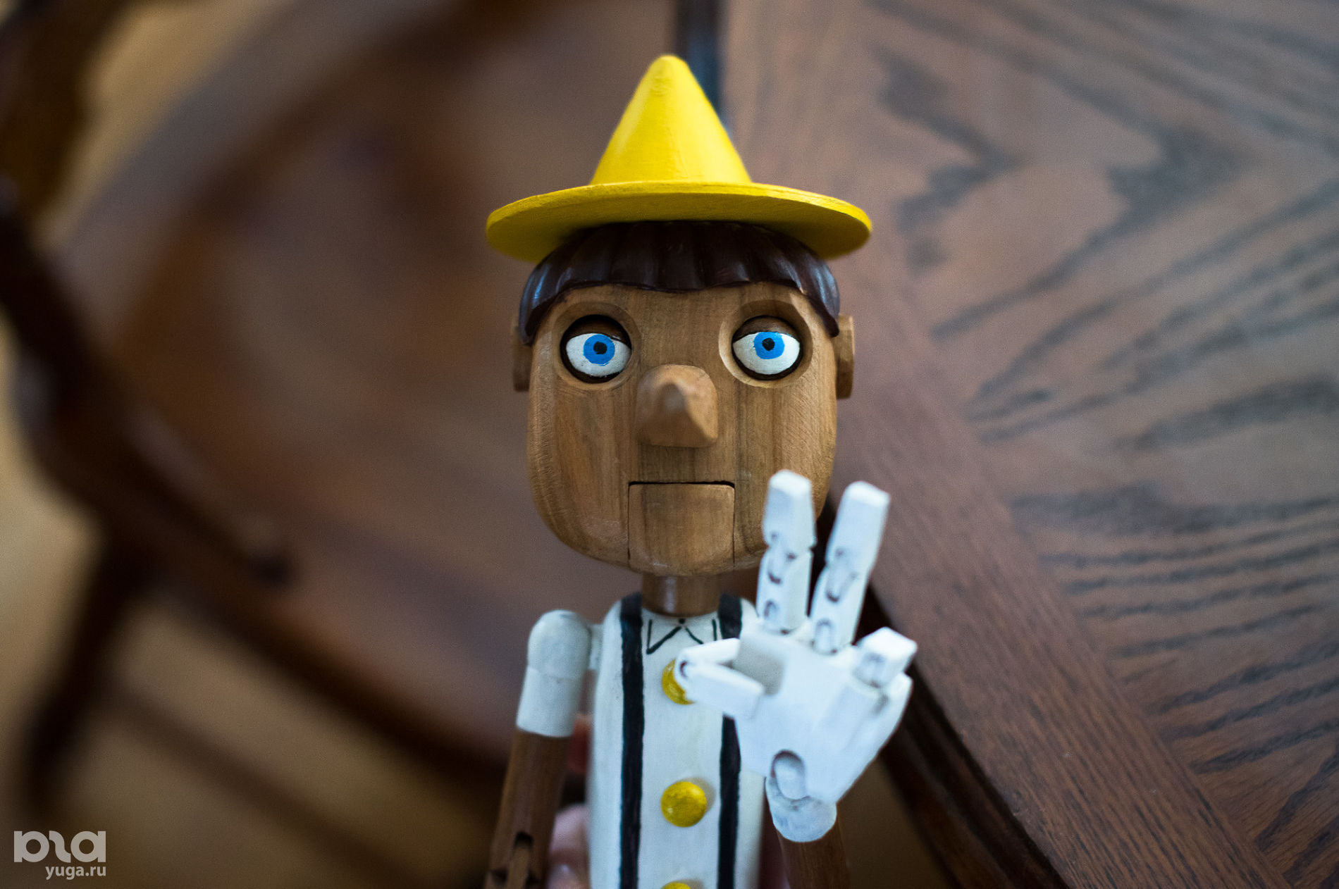 Интересная профессия: кукольник Николай Стежкин ©Фото Елены Синеок, Юга.ру