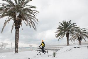 Аномальный снегопад в Сочи. 2 февраля ©Фото Юга.ру