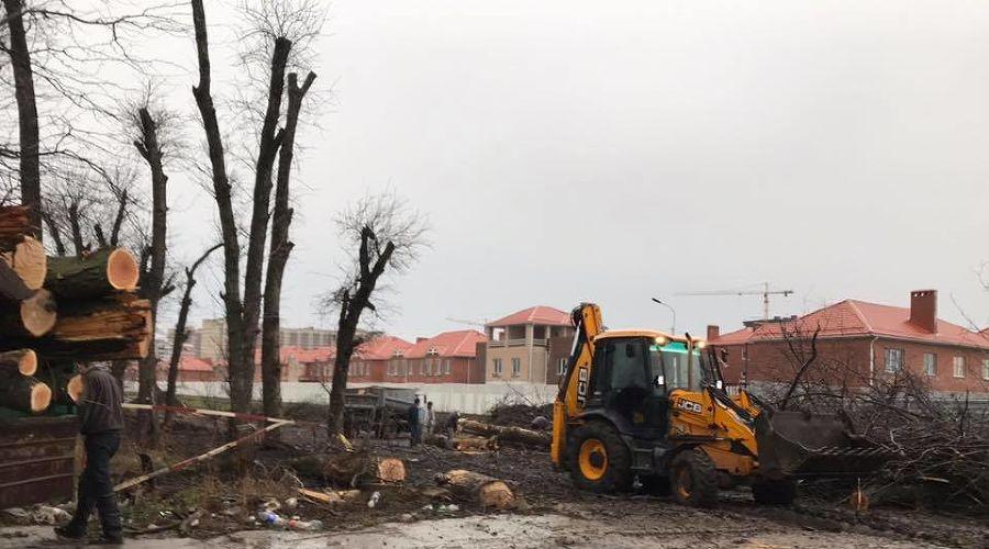 ©Фото со страницы «Помоги городу» в фейсбуке, facebook.com/groups/helpcity