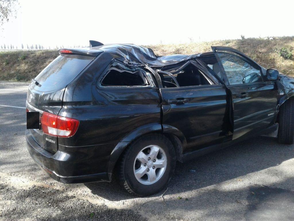 Под Крымском тополь упал на джип, шофёр умер, пассажирка в клинике