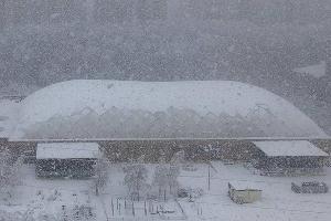 Спорткомплекс «Екатеринодар» во время снегопада и после него ©Фото Оксаны Литвиновой из телеграм-канала телеканала «Краснодар», t.me/tvkrasnodar