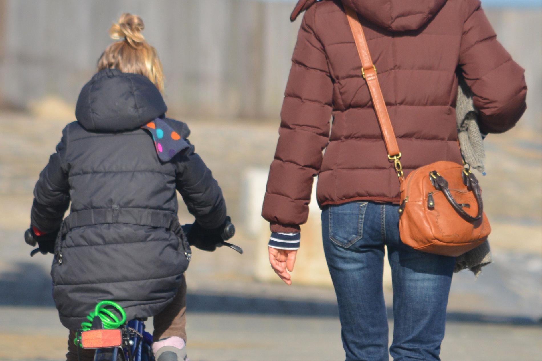 В Российской Федерации задумались осоздании центров реабилитации для домашних тиранов