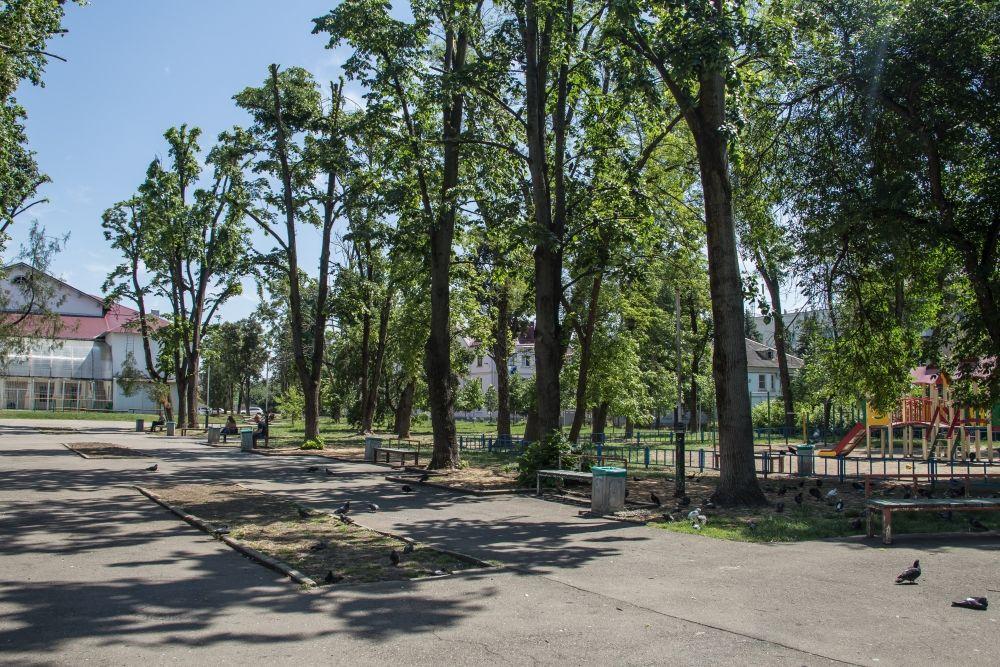 Сквер «Студенческий» ©Фото пресс-службы администрации Краснодара