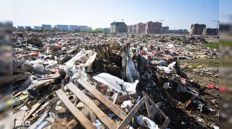 Свалка в мкр. Гидростроителей в Краснодаре ©Фото Юга.ру