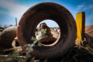 Экспонаты, найденные при археологических раскопках в Фанагории ©Елена Синеок, ЮГА.ру