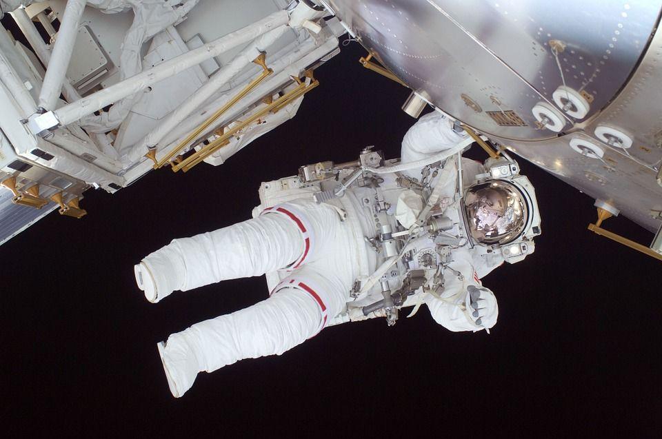 НаСтаврополье ученые выдумали новейшую еду для космонавтов
