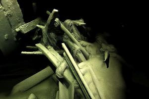 Кладбище древних кораблей ©Фото Юга.ру