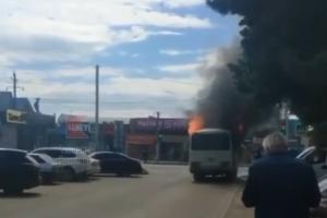 ©Скриншот видео из паблика «Типичный Краснодар», vk.com/typical_krd