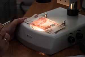 Подозрительные банкноты на экспертизе у специалиста ©Фото Елены Синеок, Юга.ру