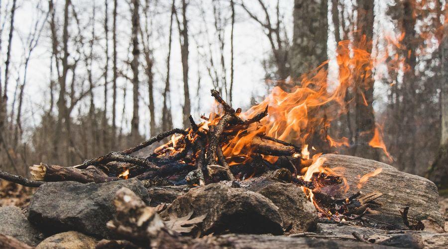 Костер в лесу ©Фото Harishan Kobalasingam, unsplash.com