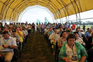 День поля в станице Ладожской ©Фото пресс-службы Агрохолдинга «Кубань»