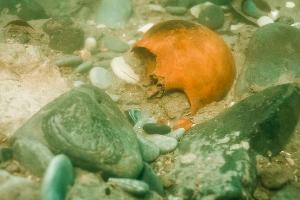 ©Фото со страницы «Подводная археология/раскопки» в Instagram, instagram.com/fan_underwater