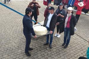 Самый большой круг адыгейского сыра ©Фото Елены Малышевой, Юга.ру