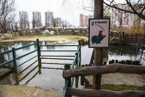Краснодарский «Сафари-парк» ©Фото Елены Синеок, Юга.ру