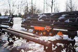 Новая аллея в Юбилейном микрорайоне Краснодара ©Фото Елены Синеок, Юга.ру