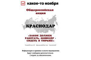 """©Фото со страницы «ВКонтакте» «КРАСНОДАР. Акция """"Закон должен работать!""""», https://vk.com/event46698996"""