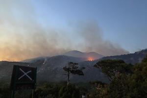 Пожар в заповеднике «Утриш» ©Фото Виталия Кавтарадзе
