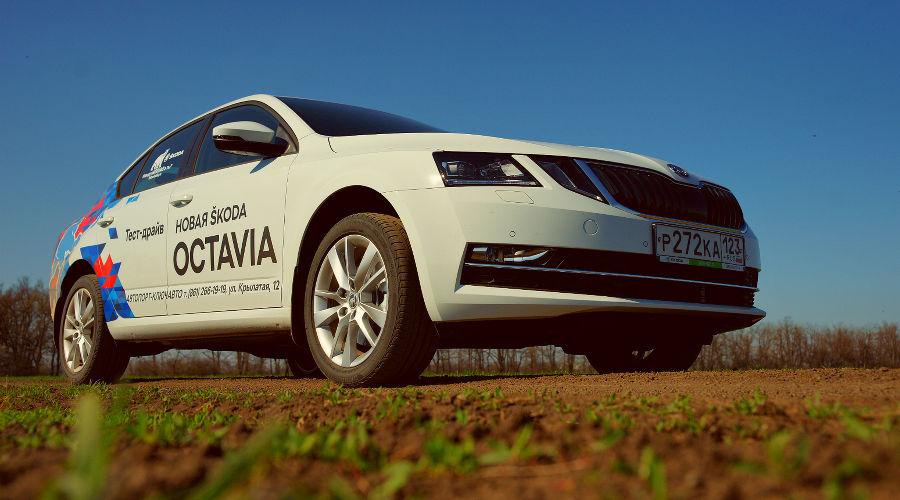 Новая Skoda Octavia: Во все четыре глаза. Колонка Евгения Мельченко ©Фото Юга.ру